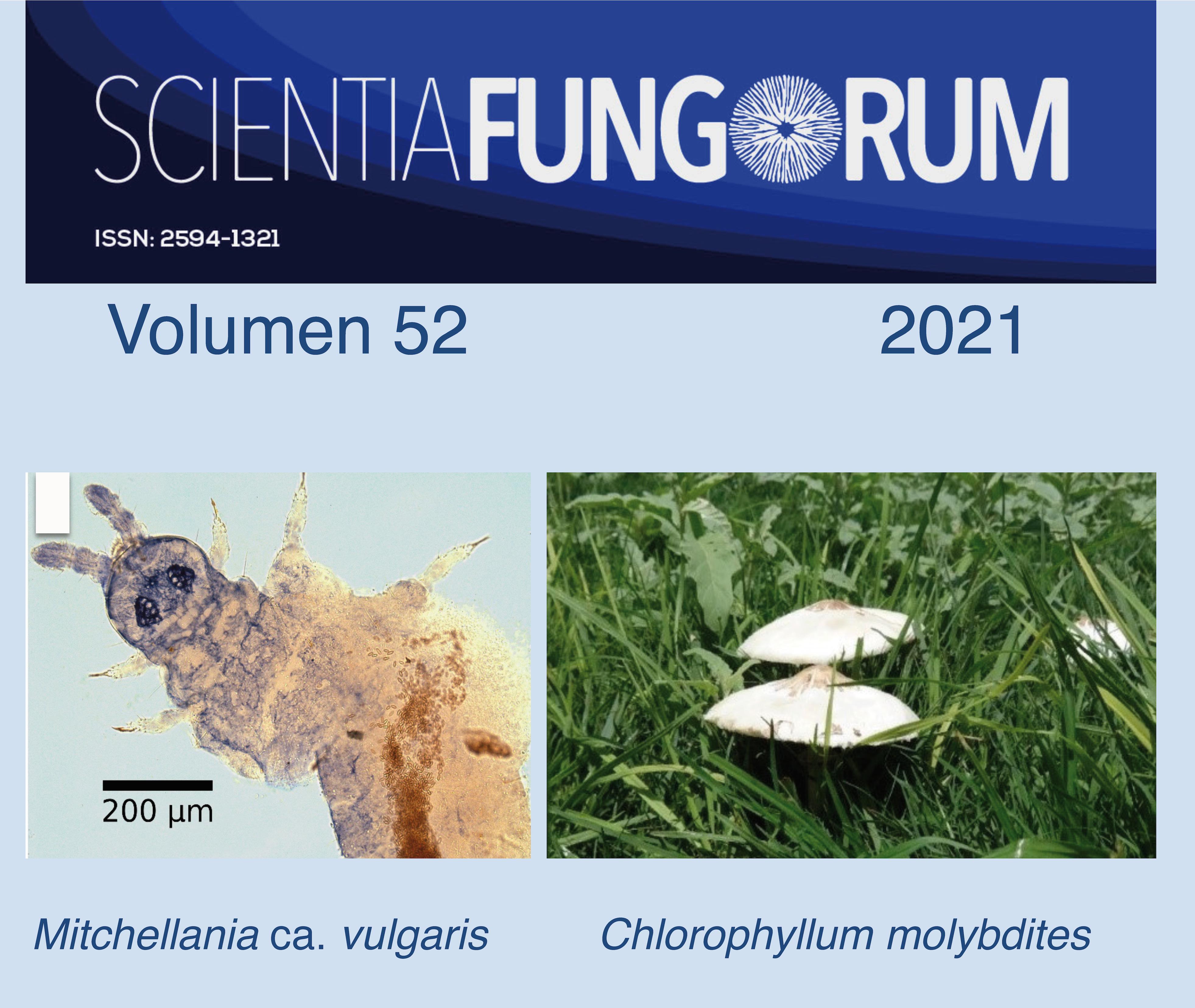 Scientia Fungorum 52 (2021)